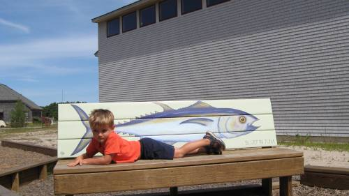 resting, alongside a bluefin